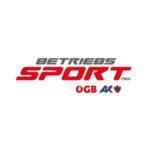 Betriebs Sport